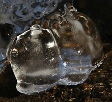 Nature's Ice Scuptures by Tim Holmes