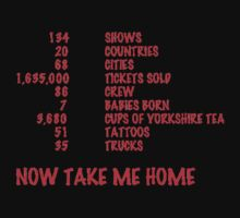 Take Me Home Tour Shirt by amd1