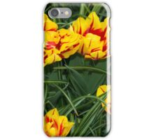 Red yellow speckled Tulips  iPhone Case/Skin