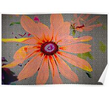 Light orange flower design Poster