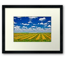 Wheat farm field at harvest Framed Print