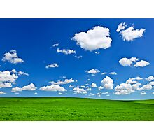 Green rolling hills under blue sky Photographic Print