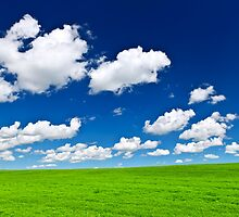 Green rolling hills under blue sky by Elena Elisseeva