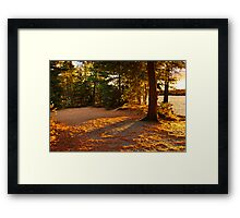 Autumn trees near lake Framed Print