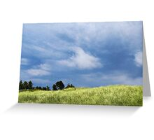 Storm Over Grassy Dunes Greeting Card