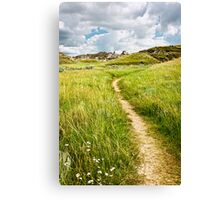 Trail in Badlands in Alberta, Canada Canvas Print