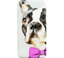 Boston Terrier - The Nervous Groom iPhone Case/Skin