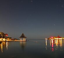 Sandals Royal Carribean by Moonlight - Jamaica #2 by David J Dionne