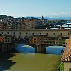 The Bridges of Florence, Italy by Georgia Mizuleva