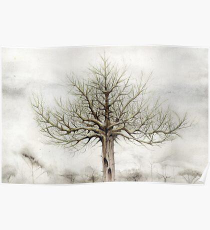 Tree VII Poster
