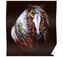 Mustang Pinto Poster