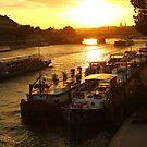 Seine sunset by bposs98