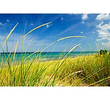 Sand dunes at beach Photographic Print