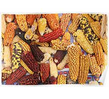 Varieties of Corn at the Market Poster