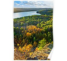 Fall forest and lake top view Poster