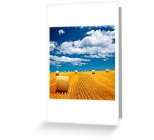 Farm field with hay bales Greeting Card