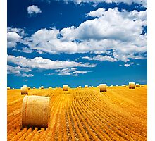 Farm field with hay bales Photographic Print