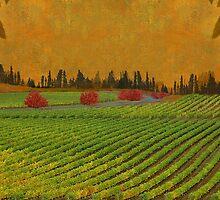 Mystical Vinery by Jeff Burgess