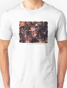 Demolition Derby (Pietersite) T-Shirt