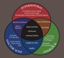 SuperWhoLock Venn Diagram by fairy911911