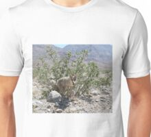 Coyote in Death Valley Desert Unisex T-Shirt