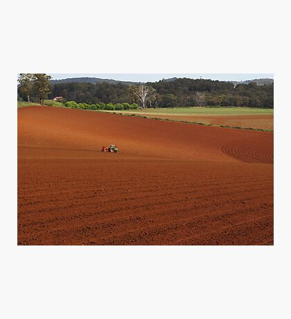 Lonely Farmer Photographic Print