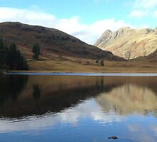 Blea Tarn by GeorgeOne