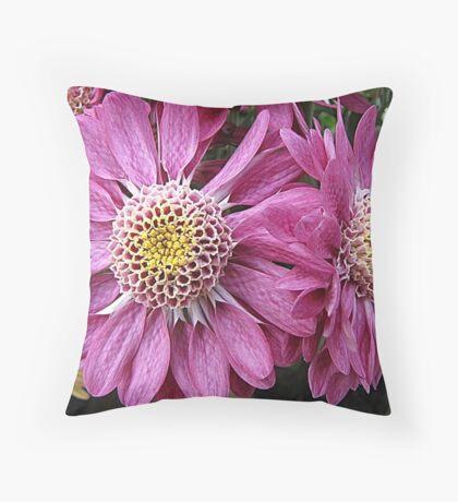 Twin Pinks Throw Pillow