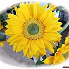 """ Sallys Sunflower "" by mrcoradour"