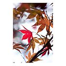 Autumn Leaves - iPad Case by Natalie Broome