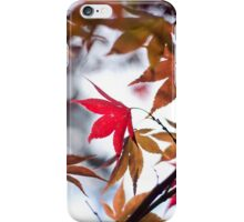 Autumn Leaves - Phone Case iPhone Case/Skin