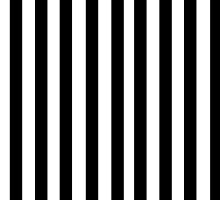 Beetlejuice stripes by Raccoon-god
