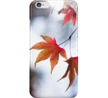 Autumn Leaves 6 - Phone Case iPhone Case/Skin