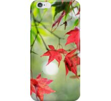 Autumn Leaves 5 - Phone Case iPhone Case/Skin