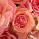 blush #3 by CaptMummy