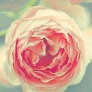 bloom by CaptMummy