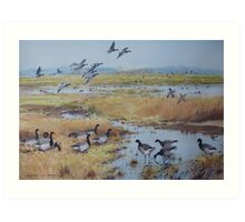 Brent Geese, Cley Marshes Art Print