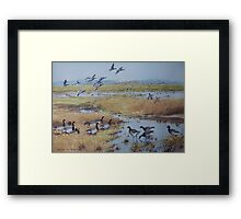 Brent Geese, Cley Marshes Framed Print