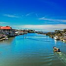 Shem Creek by imagetj