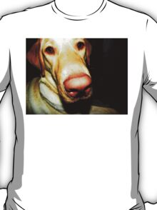 Shelby T-Shirt