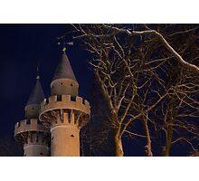 Powis Towers Photographic Print