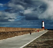Berwick lighthouse by tmtht