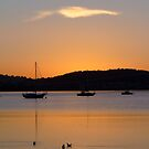 Yachts at Sunrise, Cornelian Bay, Tasmania by Odille Esmonde-Morgan