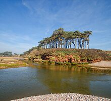 Dragons Back Budleigh Salterton by Chris Thaxter