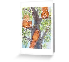 Squirrel Games Greeting Card