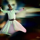 Dervish by Ted Byrne