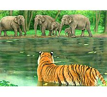 Asian Waterhole Photographic Print