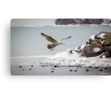 Above the Frozen Waters Canvas Print