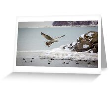 Above the Frozen Waters Greeting Card
