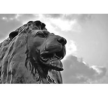 Nelson's Lion Photographic Print